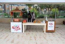 İzmir Piknik Organizasyonu Dondurma İkramları