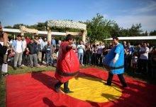 Sumo Güreşi Oyun Parkuru Kiralama ve Oyun Anı